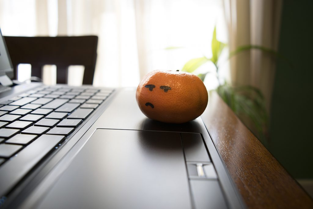 An orange browsing the web